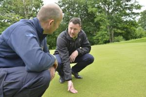 Turf Solutions advice